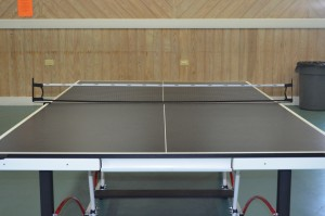 Ping Pong table_5394